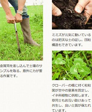 金属筒を差し込んで土壌のサンプルを取る。意外に力が要る作業です。