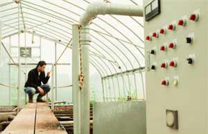 微生物の動きにより、排水は約40日かけて浄化されます。