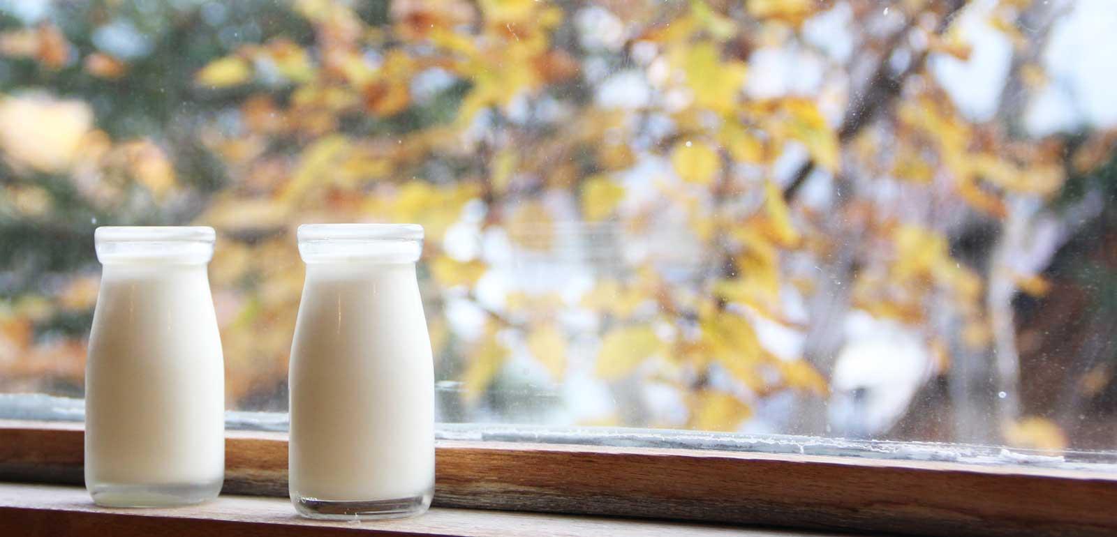 朝の牛乳配達「搾りたての放牧牛乳を求めて」-糠平温泉 中村屋-